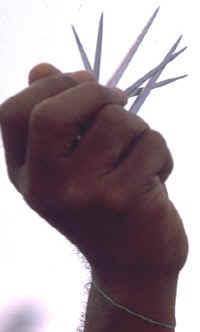 5 inch nails, by Michel Guntern