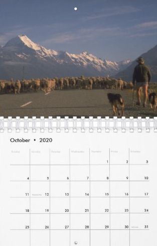 Travel Notes Wall Calendar - October