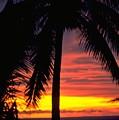Champagne Sunset - Darwin, Australia