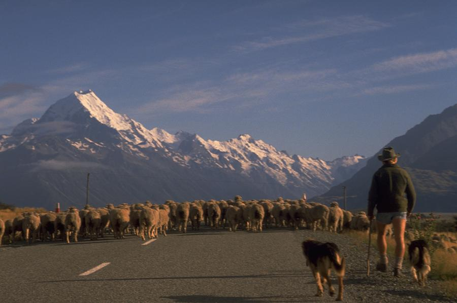 Mount Cook, New Zealand Travel Photography