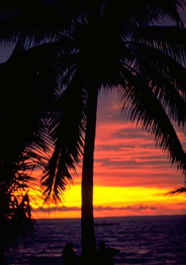Champagne Sunset in Darwin, Australia Travel Photography